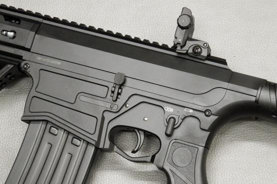 PALLAS PX-3 Selbstladeflinte Kaliber 12/76 ( AR-15 AR-10 Klon ) SL - Flinte